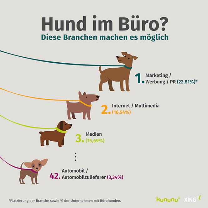"""Infografik """"Hund im Büro"""" von Kununu und Xing"""
